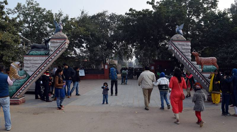 Keoladeo National Park Timings and Entry Fee